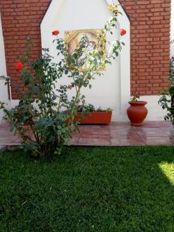 Renovamos con plantines en el jardín de la virgen 💗🌷💐